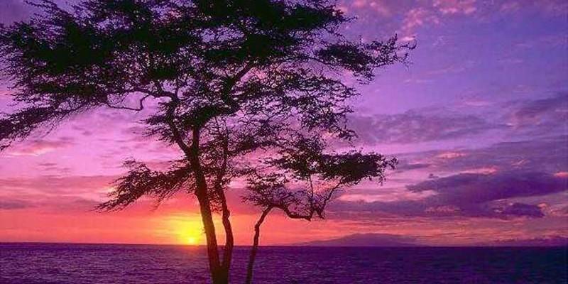 tramonto