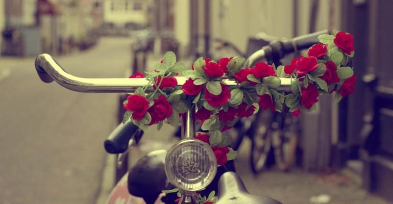 rose_bicycle