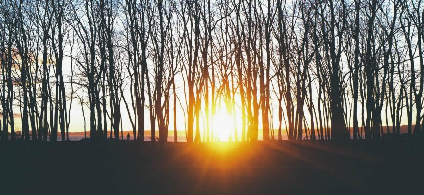 sunso
